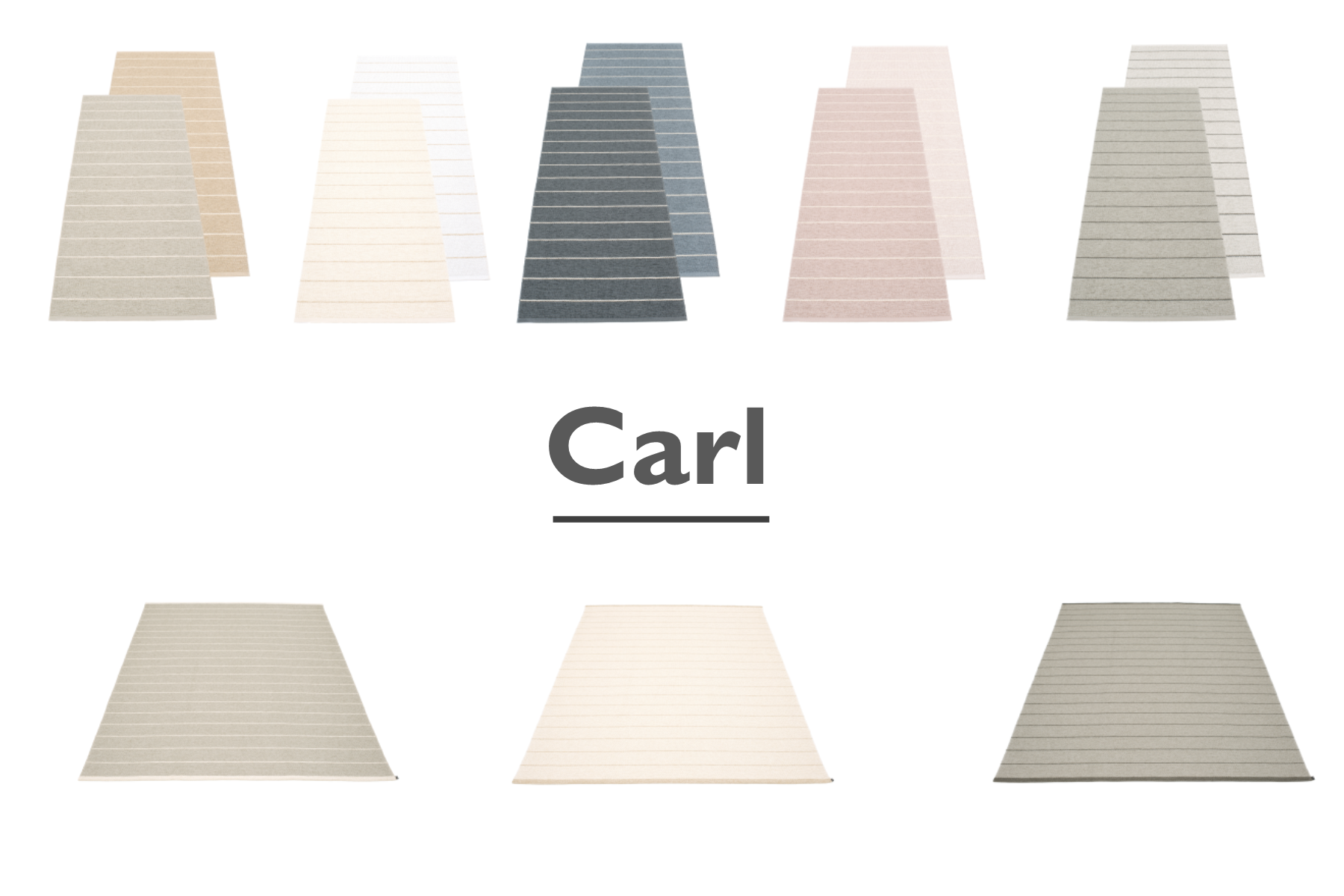 carl-summary.png